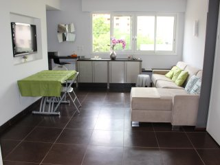 Nice apartment Martinez Cannes - Cannes vacation rentals