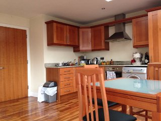 Close to Trinity College Dublin, own bathroom - Dublin vacation rentals