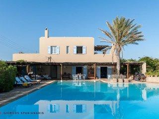 Amazing villa at Aigina island - Athens vacation rentals