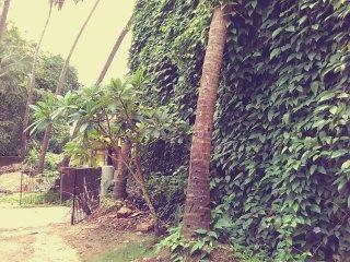 Villa For Rent In Goa, Saligao (Near Candolim) - Saligao vacation rentals