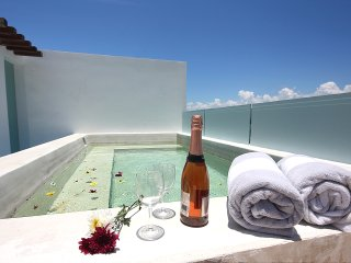 Private Terrace With A Pool! PH Perfect For 8 - Playa del Carmen vacation rentals