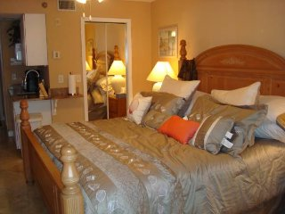 Paradise Lakes Resort Studio in nudist community - Lutz vacation rentals