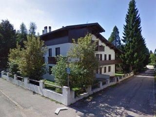 Chalet Alba - Appartamento con giardino - Gallio vacation rentals
