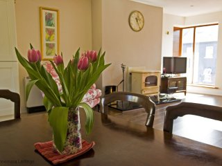 Gannon's Apartment 1 - Stylish, comfy town centre apt with parking & wifi - Clifden vacation rentals