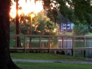 Family friendly lakefront vacation rental - Summerton vacation rentals