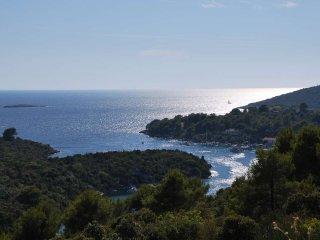 Ferienwohnung Villa Lunaris A4 - Maslinica vacation rentals