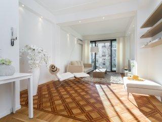 Victor Hugo - 2 Chambres - Centre Ville - Nice vacation rentals