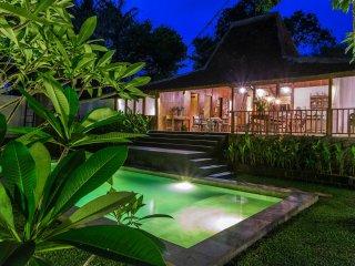 VILLA MANGO - Canggu vacation rentals