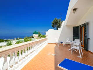Private Villa Loto, free parking, private pool, private terraces, wi-fi - Sorrento vacation rentals