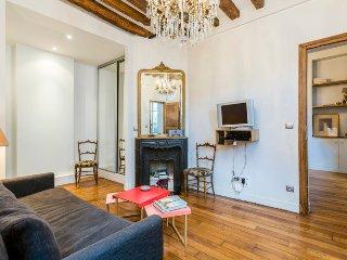 Classic Beauty Charming Street *FREE SEINE CRUISE - Paris vacation rentals