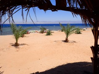 Bedouin Star Traditional Triple room Egypt - Nuweiba vacation rentals