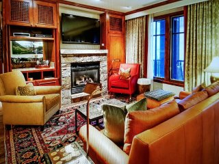 Beautiful Condo with Television and DVD Player - Aspen vacation rentals