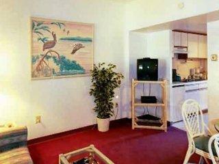 Nice 1 bedroom Apartment in Virginia Beach - Virginia Beach vacation rentals