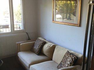 cosy modern studio near Geneva - Gaillard vacation rentals