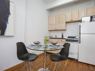 1 bedroom Condo with Internet Access in New York City - New York City vacation rentals