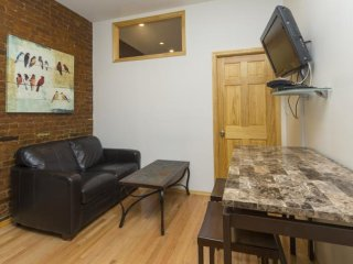Beautiful and Chic 1 Bedroom Apartment in NYC - Catskill Region vacation rentals