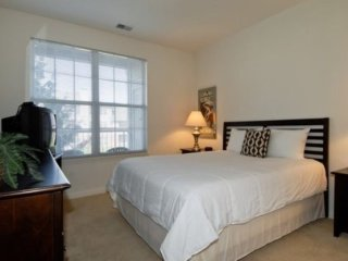 1 bedroom Apartment with Internet Access in Naperville - Naperville vacation rentals