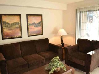2 bedroom Condo with Internet Access in Baltimore - Baltimore vacation rentals