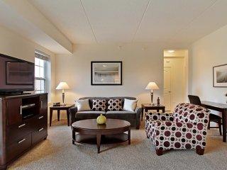 2 bedroom Condo with Internet Access in Vernon Hills - Vernon Hills vacation rentals