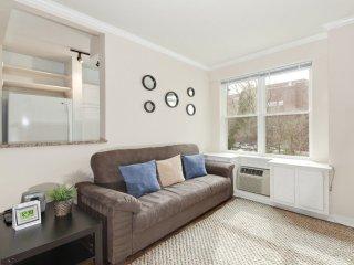 Simple yet Beautiful Studio Condo in Washington - Washington DC vacation rentals