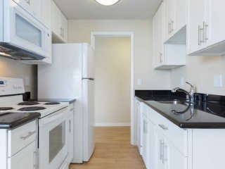 Sunny and Spacious 1 Bedroom, 1 Bathroom Apartment in Richmond - Richmond vacation rentals