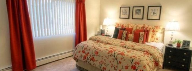 FULLY FURNISHED AND SPACIOUS 2 BEDROOM, 1 BATHROOM APARTMENT - Image 1 - Nashua - rentals