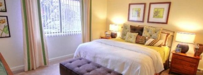 Nice North Chelmsford Apartment rental with Internet Access - North Chelmsford vacation rentals