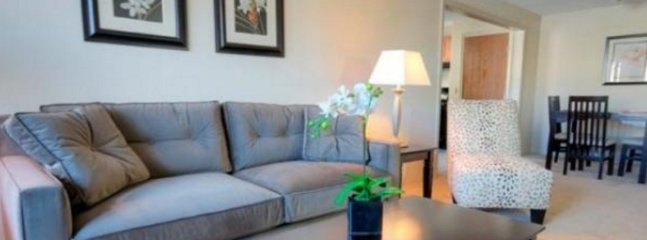 2 bedroom Condo with Internet Access in North Chelmsford - North Chelmsford vacation rentals