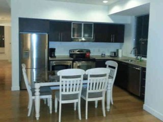 UPSCALE 3 BEDROOM, 2 BATHROOM FURNISHED APARTMENT - Boston vacation rentals