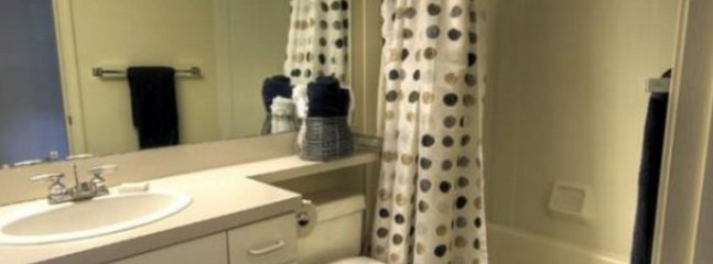 1 bedroom Apartment with Internet Access in Marlborough - Marlborough vacation rentals