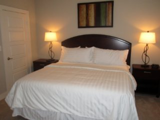 Furnished 1-Bedroom Apartment at Parkwood Blvd & John Q Hammons Dr Frisco - Frisco vacation rentals