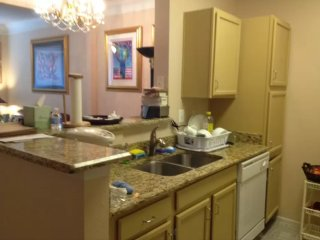 Modern and Clean 1 Bedroom Apartment - Tysons Corner vacation rentals