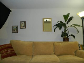 Furnished Studio Apartment at Oak St & Octavia Blvd San Francisco - San Francisco vacation rentals