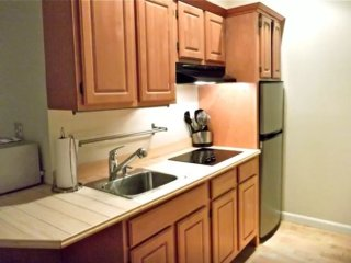 Furnished Studio Apartment at Massachusetts Ave & Tyler Ct Cambridge - Cambridge vacation rentals