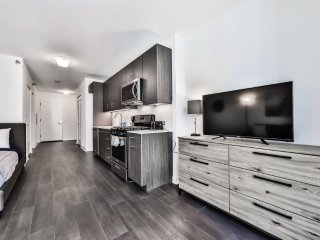 Furnished Studio Apartment at W Randolph St & N State St Chicago - Chicago vacation rentals