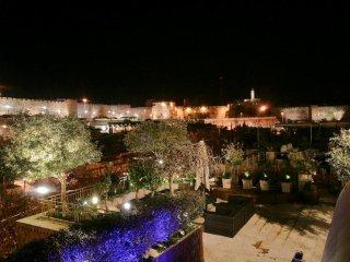 Fabulous 3 bdrs David village penthouse  with view - Jerusalem vacation rentals