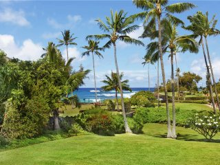 Manualoha 102 - Poipu vacation rentals