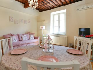 guest apartment Sally: city center,wifi,air-conditioning - Lucca vacation rentals