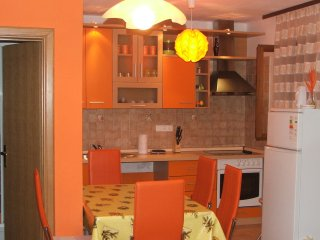 Bright 2 bedroom Njivice Condo with Internet Access - Njivice vacation rentals