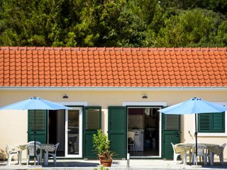 Sunny and peaceful apartment near the beach - Grebastica vacation rentals