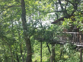 Romantic 1 bedroom Tree house in Thoard - Thoard vacation rentals