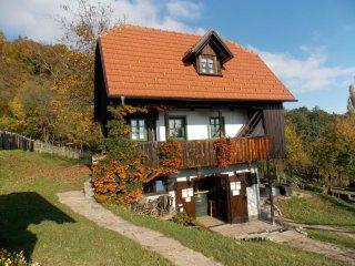 RURAL TOURISM Etno kuća pod Okićem - Samobor vacation rentals