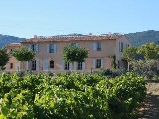 le mas des sentinelles ,au coeur du luberon - La Motte-d'Aigues vacation rentals