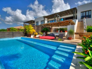 4 Bedroom Penthouse ..  Private Pool & Full Staff - Punta de Mita vacation rentals