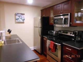 Beautiful, new, one bedroom, amazing location - Boston vacation rentals