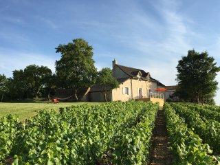 Les Maisons de Chamirey, séjour au coeur des vignes - Mercurey vacation rentals