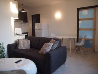 DAX T1 tout confort proche centre-ville et thermes - Dax vacation rentals