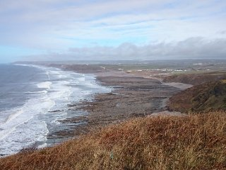 sea side holiday home 200 metres from beach - Widemouth Bay vacation rentals