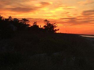 Original cottage in the dunes. Pet friendly - Ocean City vacation rentals
