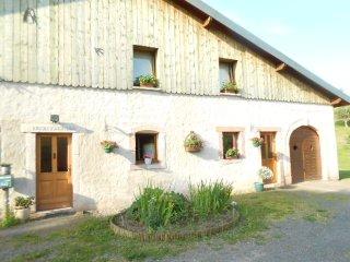 Le Gîte de la Petite Meurthe Brimbelle - Le Valtin vacation rentals